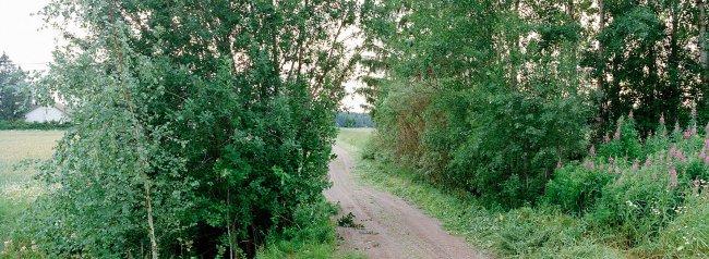 Yläne P4 S, 20.07.2000 © Oiva Hakala/ Visuaalinen maisemaseuranta/ MTT:n arkisto