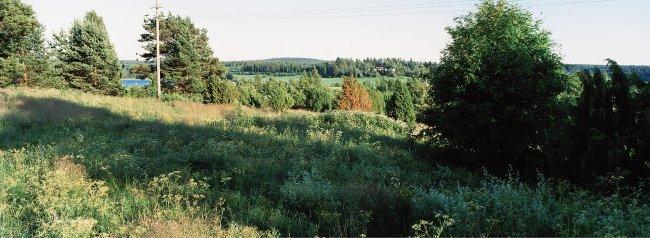 Viljakkala P27 A2, 05.07.2001 © Tapio Heikkilä/ Visuaalinen maisemaseuranta/ MTT:n arkisto