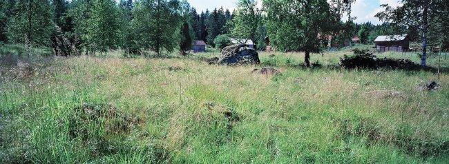 Vesilahti P39 B2, 12.07.2001 © Tapio Heikkilä/ Visuaalinen maisemaseuranta/ MTT:n arkisto