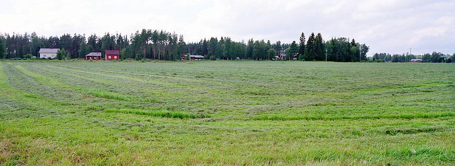 Kuortane P4 W, 27.07.2010 © Oiva Hakala/ Visaalinen maisemaseuranta/ MTT:n arkisto