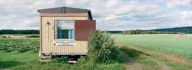 Sotkamo P9 N, 07.08.2000 © Oiva Hakala/ Visuaalinen maisemaseuranta/ MTT:n arkisto