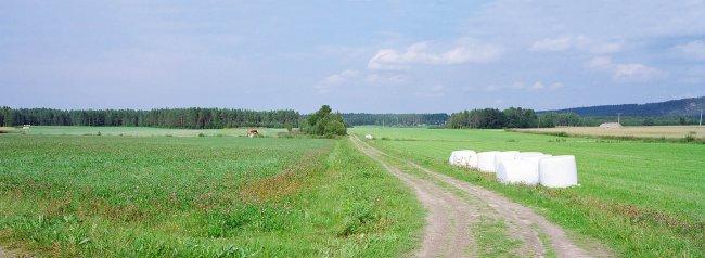 Sotkamo P9 N, 04.08.2010 © Oiva Hakala/ Visuaalinen maisemaseuranta/ MTT:n arkisto