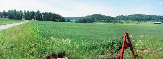 Halikko P4 S, 17.07.2000 © Oiva Hakala/ Visuaalinen maisemaseuranta/ MTT:n arkisto
