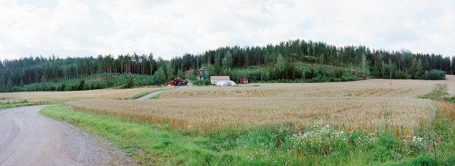 Nurmijärvi P5 S, 19.08.2000 © Oiva Hakala/ Visuaalinen maisemaseuranta/ MTT:n arkisto