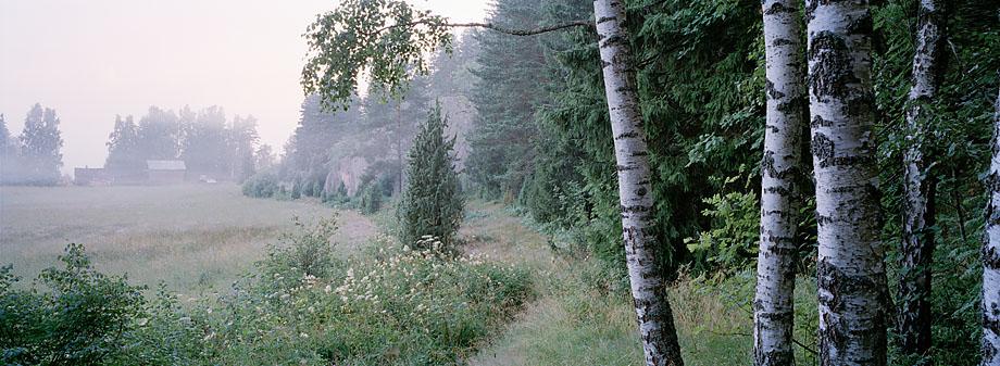 Lohja P7, 24.07.2001 © Tapio Heikilä/ Visuaalinen maisemaseuranta/ MTT:n arkisto