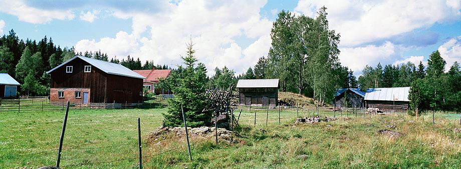 Vesilahti P39, 12.7.2001 © Tapio Heikkilä/ Visuaalinen maisemaseuranta/ MTT:n arkisto